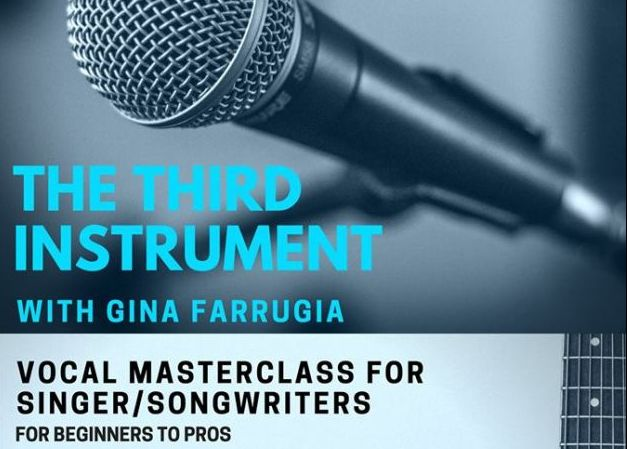 The Third Instrument Gina Farrugia
